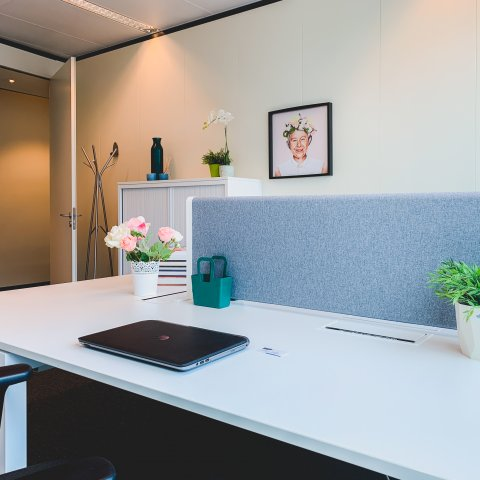 UPSHOT_BloomzOffices_4